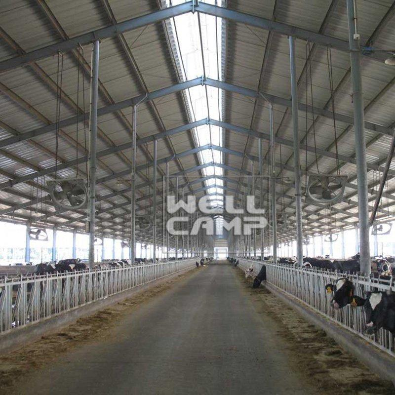 Steel Structure for Poultry Dairy Cow Shed and Chicken Farm Building Prefab Steel Buildings Custom Warehouse-W06